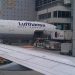 Diese Boing der Lufthansa wird gerade beladen. Es scheint als würde Post in das Flugzeug transportiert. Das Foto wurde am Flughafen Frankfurt aufgenommen.